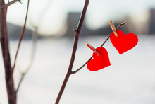 Two Red Hearts On Clothespin On The Tree Branch Outdoors.