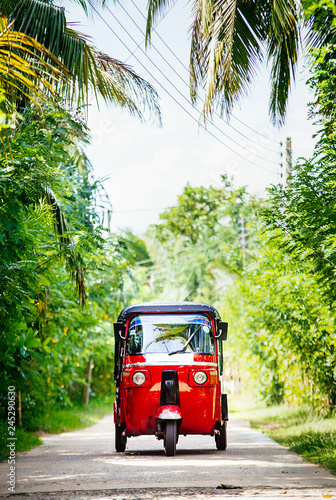 Fotografering  Red tuk-tuk under the palm trees on the country road