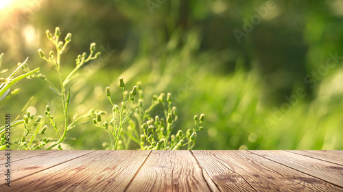 Foto op Plexiglas Weide, Moeras Spring background table.