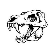 T Rex Skull Illustration Vector