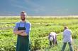 canvas print picture - Portrait freundlicher Landwirt vor dem Feld mit Arbeitern - Anbau und Produktion von Gemüse // friendly farmer in front of the field with workers - cultivation and production of vegetables