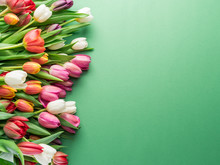 Colorful Tulip Bouquet On Green Background.