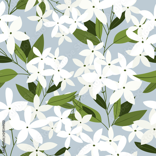 Jasmine flowers seamless pattern. Canvas Print