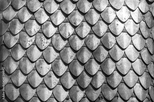 Fotografia Chain armour element made of the steel plates