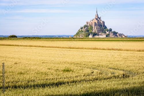 The Mont Saint-Michel tidal island in Normandy, France, seen from a path between cultivated fields in the polders at the end of the day with wheat fields in the foreground Wallpaper Mural