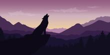 Wolf At Beautiful Purple Mountain Wildlife Nature Landscape Vector Illustration EPS10