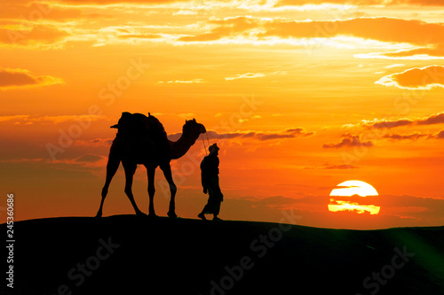 Fotomural Walking with camel through Thar Desert in India, Show silhouette and dramatic sk