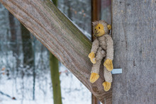 Stuffed Monkey Outside Between Some Wooden Beams During Winter, Adorable Cuddle Toy For Children And Adults