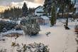 canvas print picture - Winter Gewächshaus im Garten mit viel Schnee