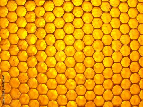 Honeycomb full of fresh sweet honey. Natural texture Wallpaper Mural