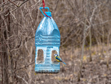 Bird Feeder Made From Used Pla...