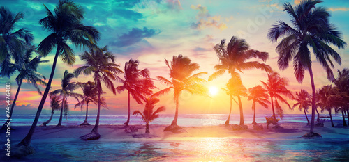 Valokuva  Palm Trees Silhouettes On Tropical Beach At Sunset - Modern Vintage Colors