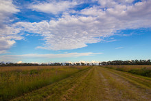 View From Military Trail, Kissimmee Prairie Preserve State Park, Florida