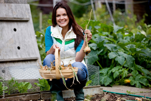Photo Woman with wooden trug picking onions on garden allotment smiling at camera