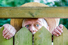 A Curious Man Looks Over A Gar...