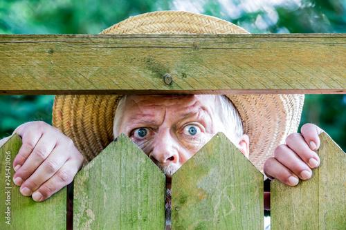 Pinturas sobre lienzo  a curious man looks over a garden fence