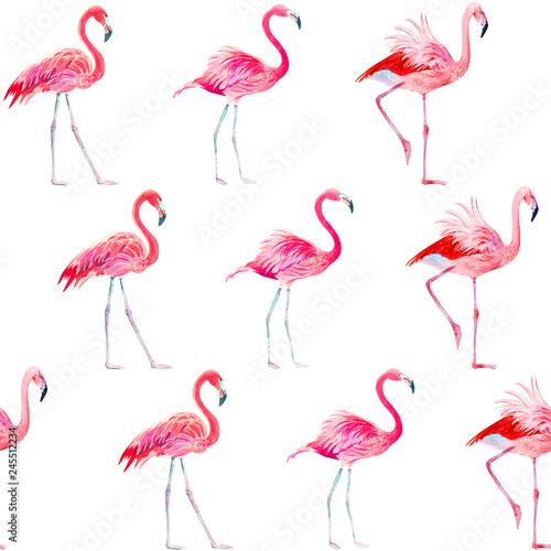 Canvas Prints Flamingo Bird Seamless pattern watercolor exotic bird pink flamingo.