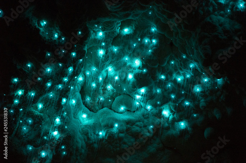Tablou Canvas glowworms in waitomo