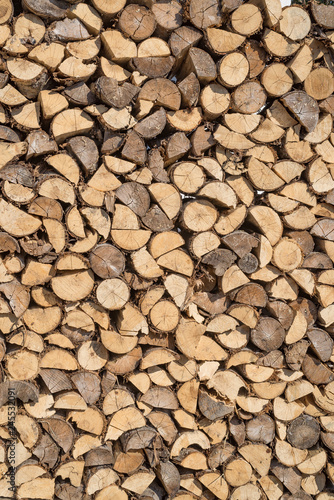Garden Poster Firewood texture Sorted wood log background texture. Stack of arranged brown wood log background