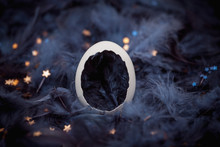 Eggshell In Blue Feathers Wit...