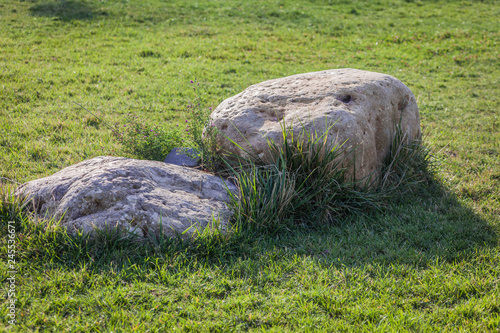 Fotografie, Obraz  The two big stones on the green grass in summer.