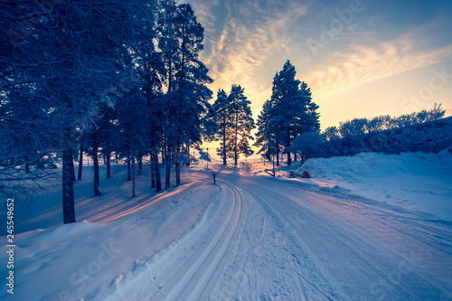 Foto op Aluminium Blauw Very cold day sunset scenery from Sotkamo, Finland.