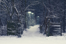 Creepy Forest Road With Lighted Lampposts On A Dark And Snowy Winter Night