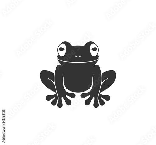 Fototapeta premium Żaba nadrzewna. Na białym tle żaba na białym tle