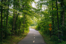 The Mount Vernon Trail, In Alexandria, Virginia
