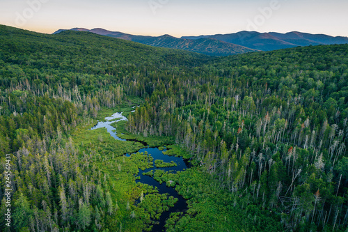 Spoed Foto op Canvas Verenigde Staten View of a wetland in the White Mountains of New Hampshire