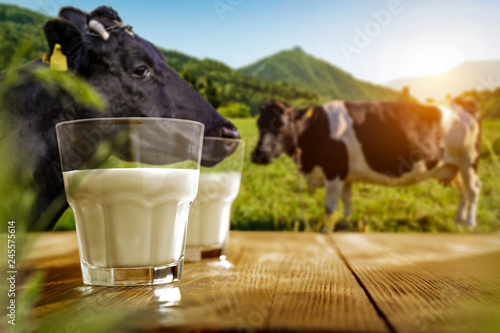 Fresh milk on wooden desk and spring landscape with cows and mountains