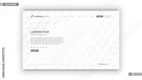 Fotografie, Obraz  Web design mockup with white hexagon background