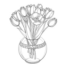 Vector Bouquet With Outline Tu...