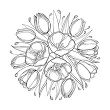 Vector Top View Round Bouquet With Outline Tulip Flowers, Bud And Ornate Leaves In Black Isolated On White Background. Bunch Of Contour Tulips For Greeting Spring Design Or Coloring Book.