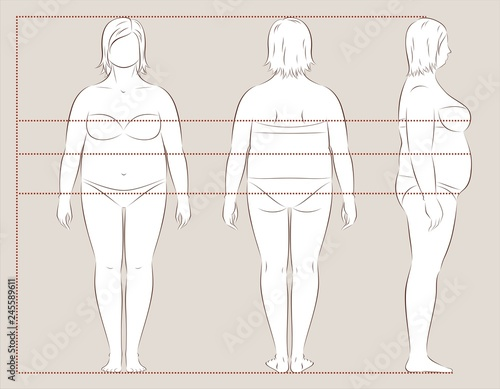 Female body lines and proportions for sewing Fotobehang