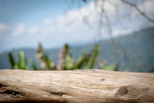 Old  Timber Floor Panel And Blur Nature View Background.Wooden Background.