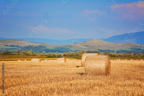 Haystacks on the Field Fototapeta