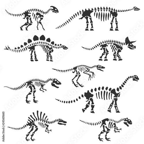 Carta da parati Dinosaur skeletons set