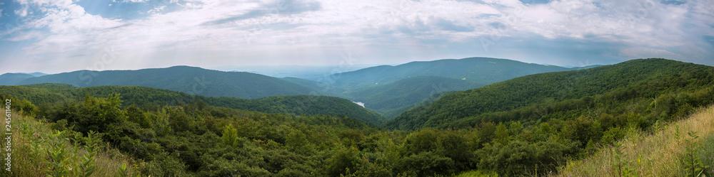 Fototapety, obrazy: Shenandoah national park Panoramic
