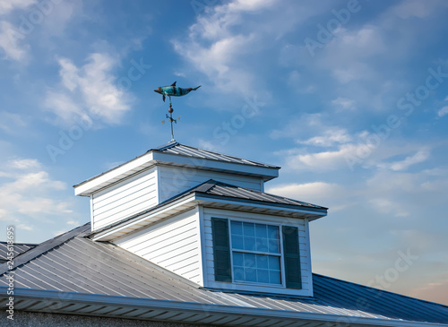 Fotografie, Tablou Windvane on Cupola on Blue Sky