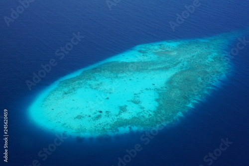 Fotografie, Obraz  Aerial view of a reef in the Maldives