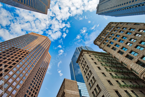 Fotomural  Boston downtown financial district and city skyline at a bright sunny day