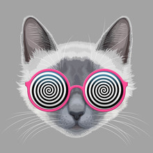 Cat Face And Hypnotic Eyeglasses