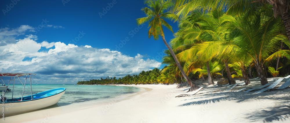 Fototapeta Palm trees and speed boat catamaran on the tropical beach, Dominican Republic. Saona island.