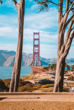 Golden Gate Bridge With Cypress Trees At Presidio Park, San Francisco, California, USA