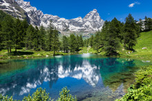 Summer Alpine Landscape With T...