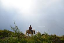 Horseback Riding In Glacier Na...