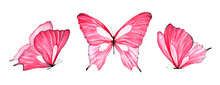 Watercolor Set Of Pink Butterf...