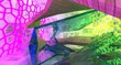 Leinwanddruck Bild - Abstract  Concrete Futuristic Sci-Fi interior With Violet And Yellow Glowing Neon Tubes . 3D illustration and rendering.