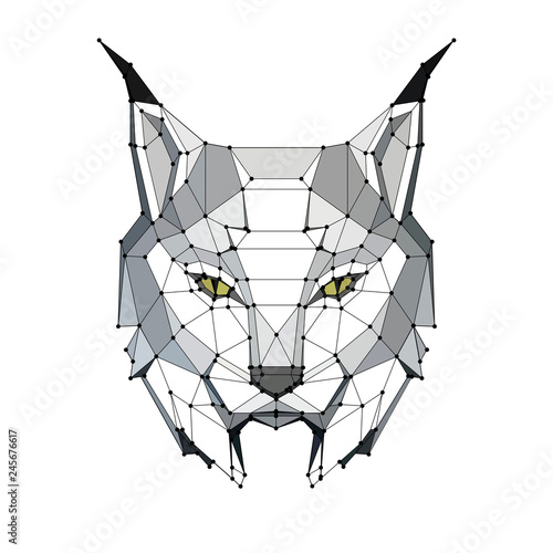 Photo low poly portrait of a lynx with points, graphic monochrome illustration